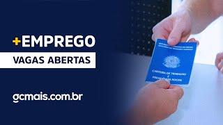 + Empregos: Ceará no Ar traz dicas para o mercado de trabalho