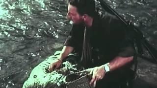 Hoàng Hôn Nhiệt Đới (phim Việt Nam - 1998)