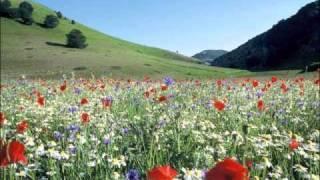 Frühlingsstimmen op. 410 - Johann Strauss II
