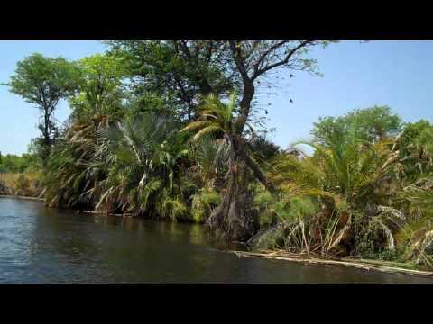 Boat transfer from Xugana Island Lodge