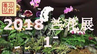 [石针养花]多伦多2018兰花展 风兰 SOOS ORCHIDS SHOW 2018 - 1