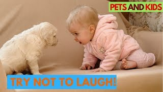 Funniest Confused Pets Compilation 2018   Try Not To Laugh - Pet Funny Videos #35