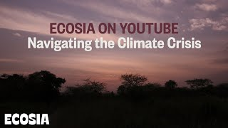 Welcome to Ecosia | Trees and the Climate Crisis Explained