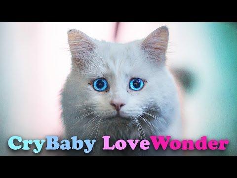 Meet CryBaby LoveWonder