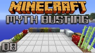 What Does Fortune Work On? [Minecraft Myth Busting 08]