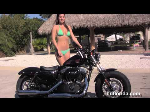 Dodge Dealers Albany Ny >> The Hd Forty-eight Motorcycle