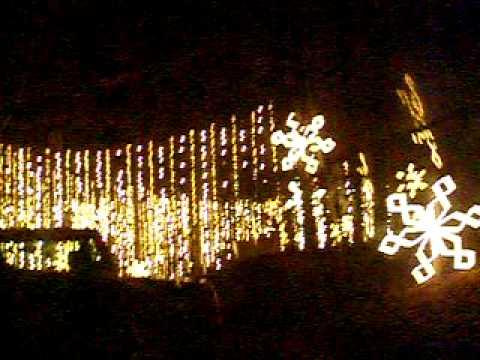 - Callaway gardens christmas lights ...