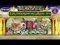 సూర్యప్రభ వాహనం | Suryaprabha Vahanam-Appalaya Gunta Bramhotsavam | 19-06-19 | SVBC TTD