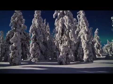 The Northern Lights | Barrhead Travel