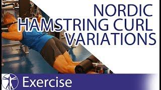 Nordic Hamstring Curl Variations   Hamstring Training