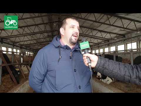 Ferma më e madhe për prodhimin e qumështit në Kosovë - Prizren (Pjesa e pare)