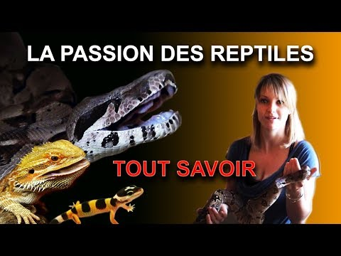 Baixar La passion des reptiles...