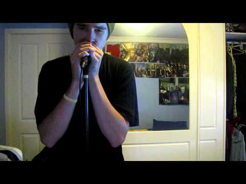 Stone Sour - The Day I Let Go (Vocal Cover)
