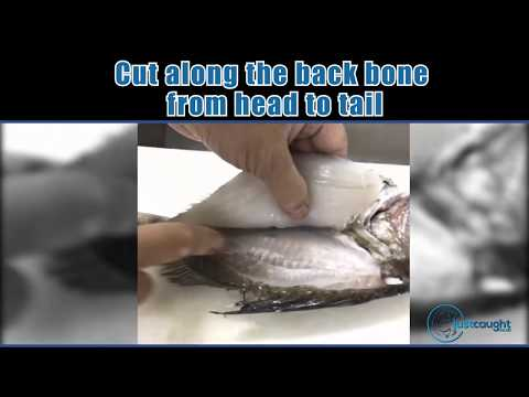 Techniques On Filleting Fish