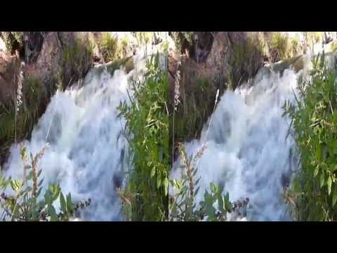 Water Fall in Golden Gate Park (YT3D:Enable=True)