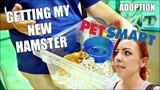 GETTING MY NEW HAMSTER   Petsmart Adoption   Syrian Hamster