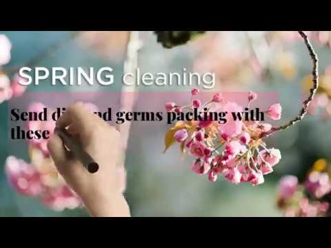Complete Spring Cleaning Guidelines in Adelaide