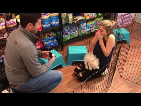Guy proposes with puppy, girl nearly has heart attack
