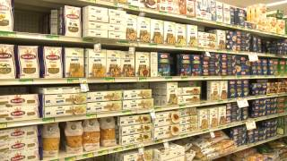 Starving for Change: Poverty and Food Insufficiency in Northern Michigan