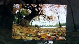 [HD] Chạm Tay Vào Điều Ước - Cao Thái Sơn