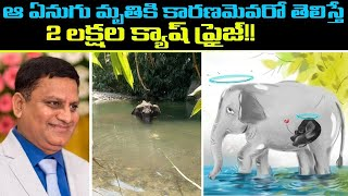 Elephant incident: Hyderabad man announced Rs 2. Lakh rewa..