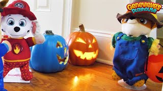 Paw Patrol Baby Pup Halloween Toy Learning Video for Kids!