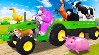 Funny Gorilla With Farm Animals On Tractor Toy In Outdoor Playground - Old MacDonald Nursery Rhymes