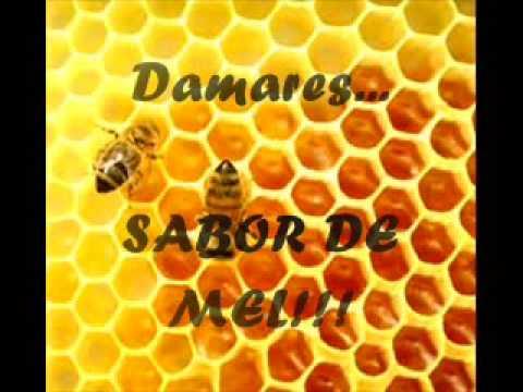 Baixar Sabor de mel - Damares