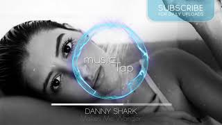 Danny Shark - Makes Me Wonder