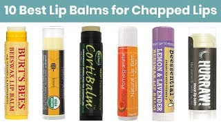 10 Best Lip Balms 2019 | For Dry Chapped Damaged Lips | Both Men & Women Can Use