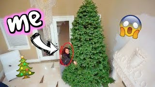 I BOUGHT THE BIGGEST TREE THEY HAD | Vlogmas Day 3