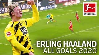 Erling Haaland - All Goals 2020