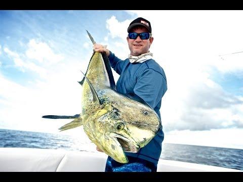 Mahi Mahi Hunting - Islas Secas, Panama