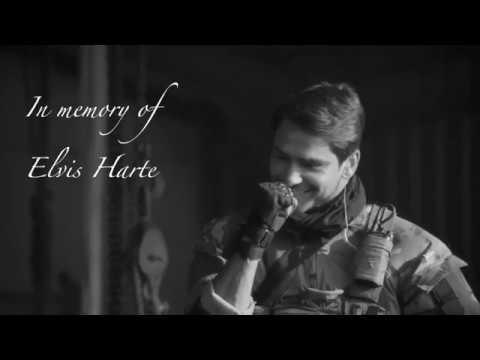 Elvis Harte | The Scientist