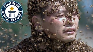Heaviest mantle of bees - Guinness World Records