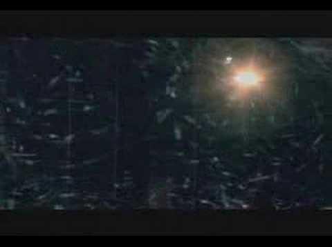 李逸朗 蔣雅文 - 普世歡騰 (MV)