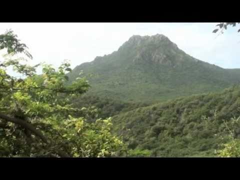 Curacao Scenes Trailer