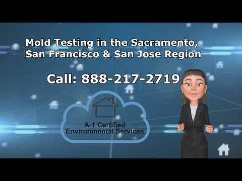 Mold Testing West Sacramento