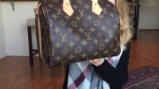 Louis Vuitton Speedy B 25 Wear and Tear Review