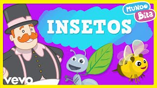 Mundo Bita - Insetos (Vídeo infantil)
