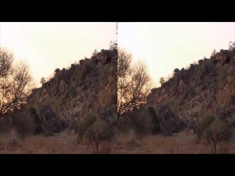 3net African Wild Mashatu Clip 1 3D Video