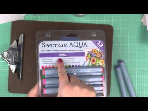 Spectrum Aqua Pens Primary 12 Pack & DVD Set