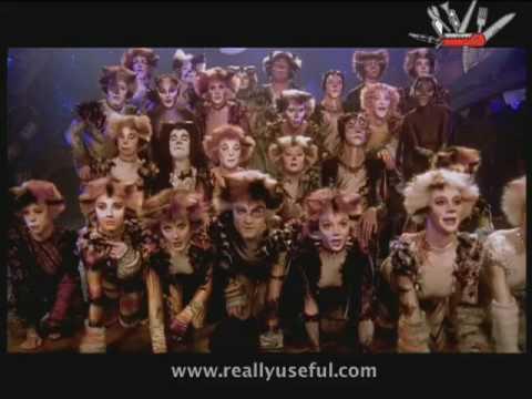 The naming of cats cats musical vagalume play stopboris Choice Image