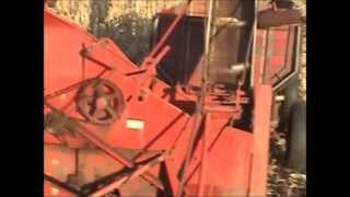 Farmall Super H tractor and IHC 1pr corn picker picking