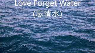 忘情水 (Love Forget Water) -  劉德華 (Andy Lau) - English lyrics