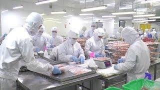 Ngành công nghiệp thực phẩm Việt Nam