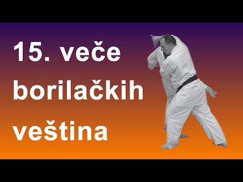 15. veče borilačkih veština | Internacionalna aikido akademija