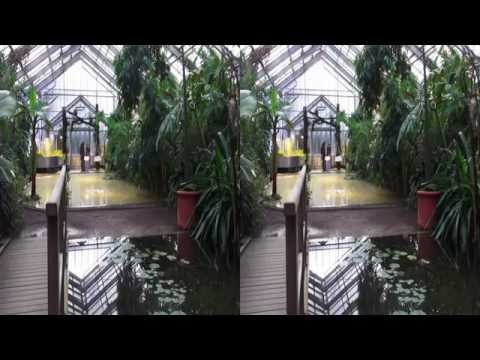 3D - Not Only Bonn's Rainforest - Botanischer Garten - YT3D