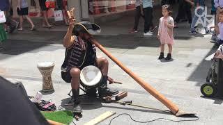 Australian Busker Plays Baby Shark On Didgeridoo