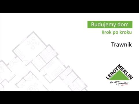 Trawnik (50/53)